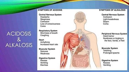پاورپوینت تعادل اسید و باز و بیماری های مرتبط